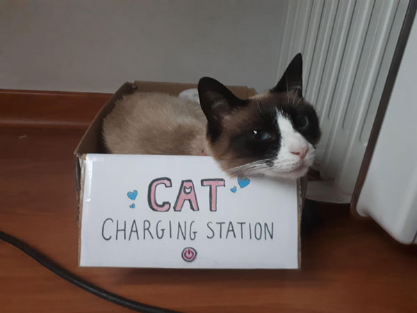 cat charging station